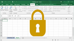 Excel Lock Cells