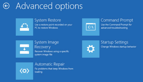 Windows 8 Advanced Boot Options